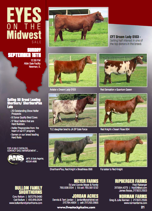 Eyes on the Midwest Sale on 9/16/18