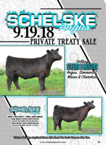 Schelske Angus Private Treaty Sale @ Virgil | South Dakota | United States