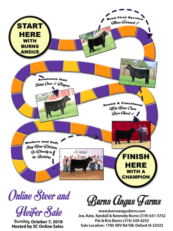Burns Angus Online Steer & Heifer Sale on 10/7/18