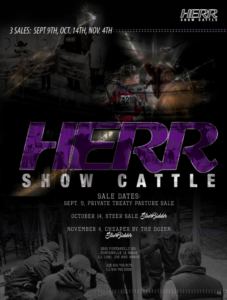 Herr Show Cattle Private Treaty Pasture Sale @ Fontanelle | Iowa | United States
