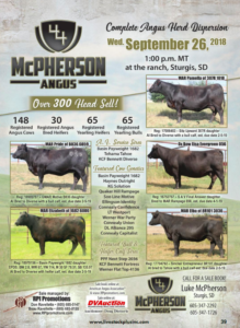 McPherson Angus Complete Herd Dispersion @ Sturgis | South Dakota | United States