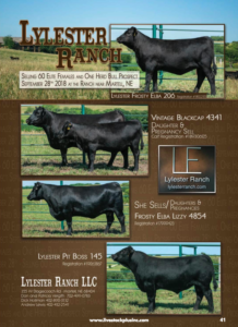 Lylester Ranch Production Sale @ Lylester Ranch | Martell | Nebraska | United States