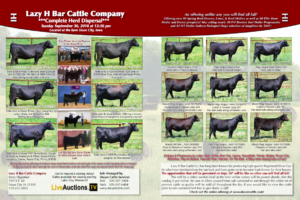 Lazy H Bar Complete Herd Dispersal @ Sioux City | Iowa | United States