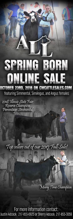 All Spring Born Online Sale on October 23rd, 2018.